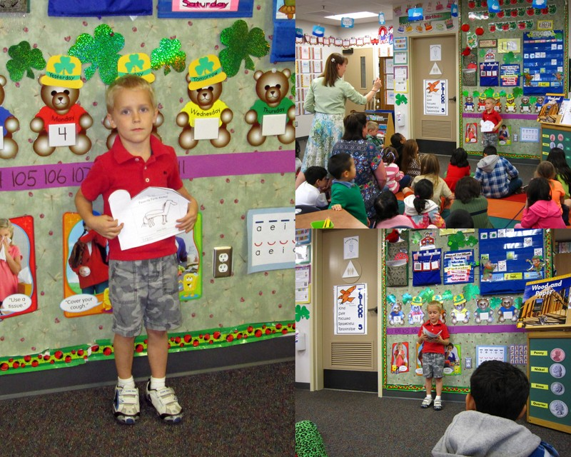 Andrew Kindergarten Farm Report